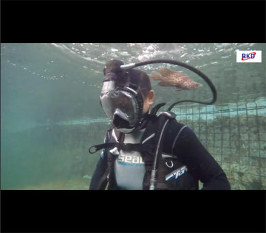 Use RKD R20  gasbag water proof universal size full face snorkel mask under water testing and see the animals in the water-China